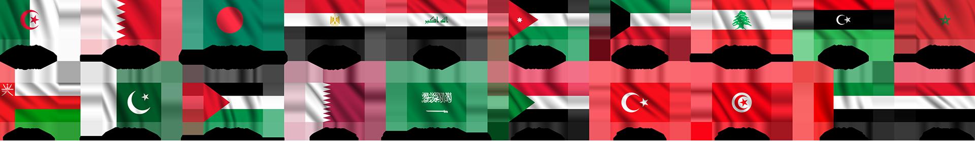 flags vector 2